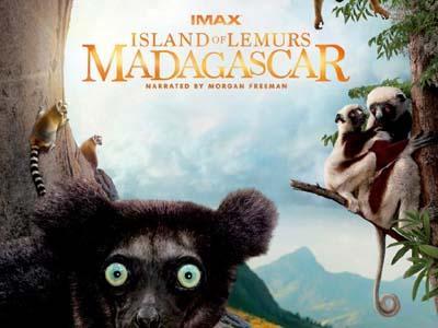 Yuk, Intip Film Dokumenter Island of Lemurs: Madagascar