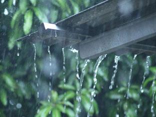 Ternyata Faktanya Suara Rintik Hujan Bisa Tenangkan Jiwa