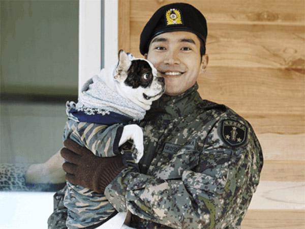Keluarga Siwon Dijatuhi Hukuman Ini Atas Kelalaian Anjing Peliharaannya