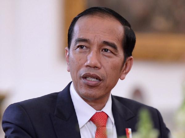 Jokowi Tanya Netizen, Daerah Mana yang Cocok Jadi Ibu Kota Indonesia