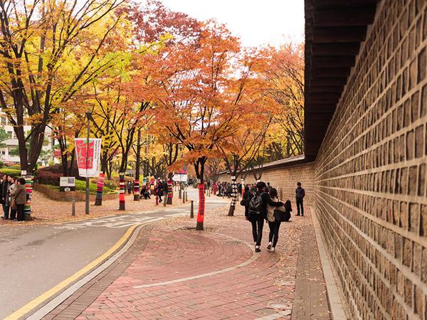 Deoksugung Stone Wall Road, Jalan Favorit untuk Pacaran Romantis di Musim Gugur
