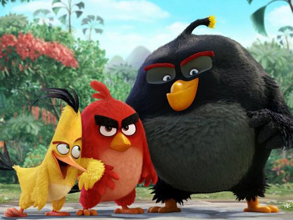 Alasan Sebenarnya Para Burung Selalu Marah Akan Terjawab Di Film Animasi 'Angry Bird'!