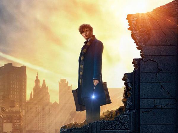 Kenalkan Makhluk Lucu, Prekuel 'Harry Poter' Tampilkan Pahlawan Baru Dunia Sihir!