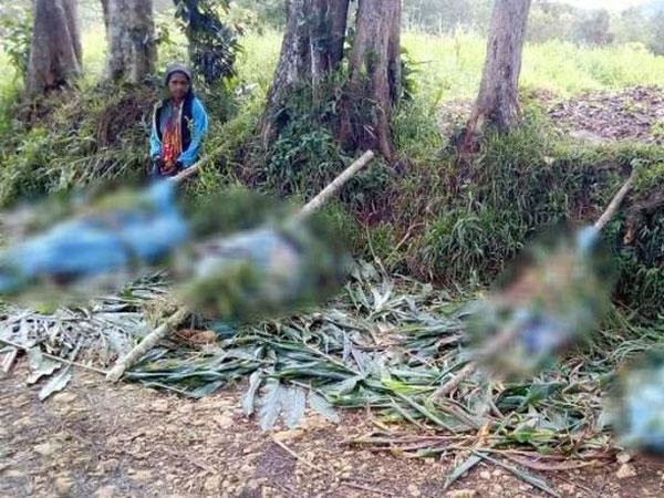 Kesaksian Warga Ngerinya Pembantaian Papua Nugini: Warga Dimutilasi dan Tergeletak di Jalan