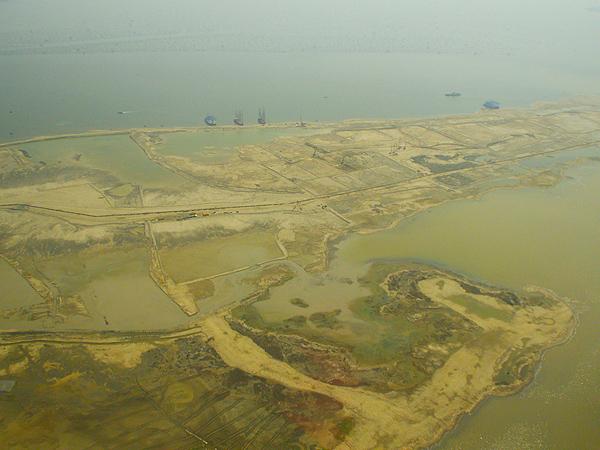 Pembangunan 17 Pulau Buatan di Utara Jakarta Ancam Habitat Elang Bondol