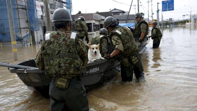 Tewaskan 7 Warga, Banjir Jepang Ikut Sapu Sampah Radiasi Nuklir