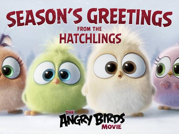 Kenalan Dengan Hatchlings, Bayi Burung Dari 'Angry Birds Movie' yang Menggemaskan!