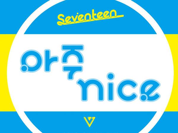 Album Review: Seventeen - 'Very Nice'