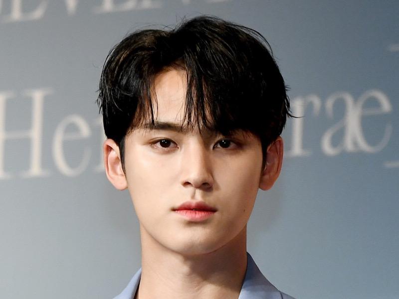 Pledis Bantah Rumor Mingyu SEVENTEEN Pelaku Bully Saat Sekolah