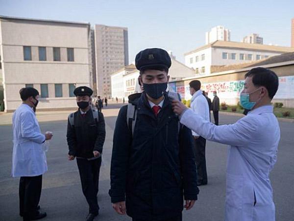 Perwakilan WHO Sudah Pastikan Korea Utara Bebas COVID-19?