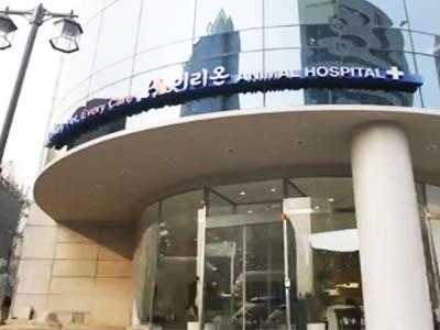 Daebak! Korea Selatan Punya Klinik Hewan Super Mewah!