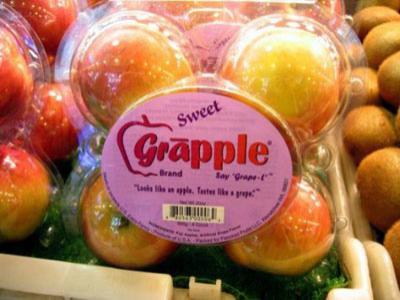 Kenalan dengan Grapple Buah Apel dengan Rasa Anggur
