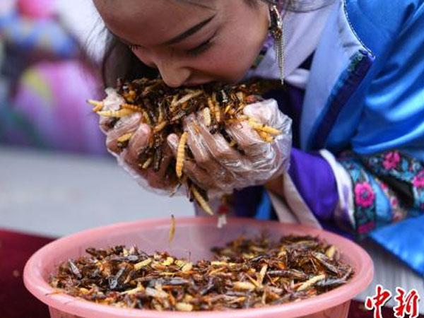 Hiii.. Para Turis Nekat Makan Serangga Demi Emas Batangan!
