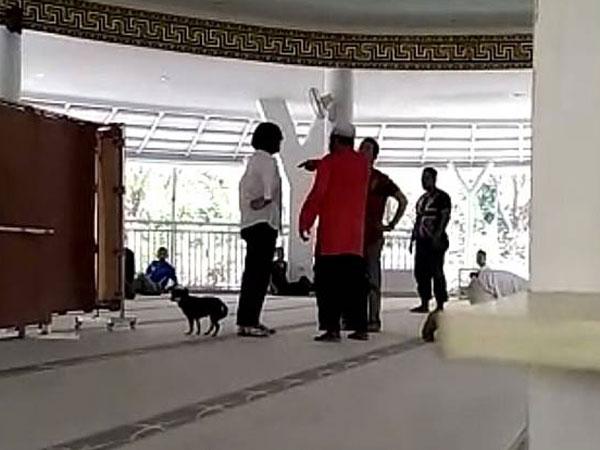 Terungkap Kronologi Tewasnya Anjing yang Viral Dibawa Masuk Masjid oleh Seorang Wanita
