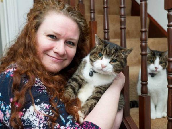12 Tahun Menghilang, Kucing Ini Kembali ke Majikannya