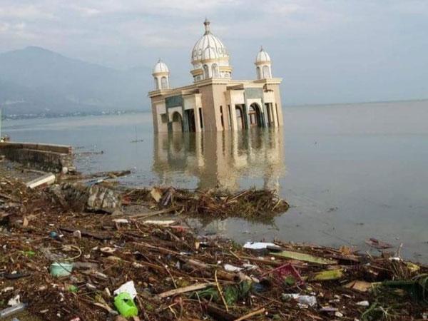 Mekanisme 'Tak Lazim' Tsunami Palu Sebabkan Kekeliruan Peringatan Dini Terungkap Karena Media Sosial
