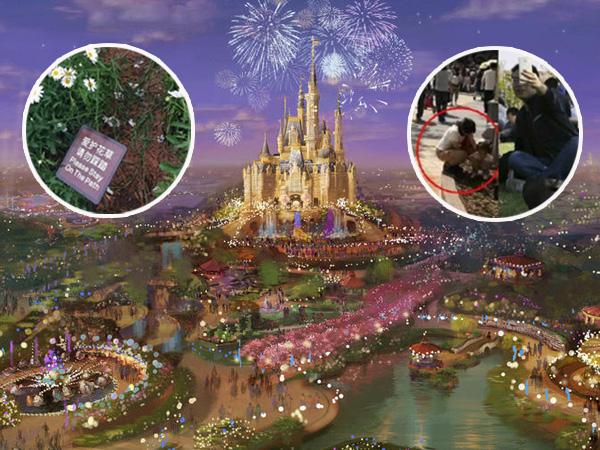 Belum Dibuka, Shanghai Disneyland Diklaim Sudah 'Hancur' Oleh 20 Ribu Turis!