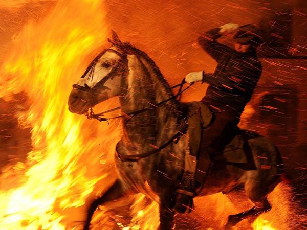 Seru, Festival Penyucian Binatang Ini Bawa Kuda 'Sebrangi' Lautan Api!