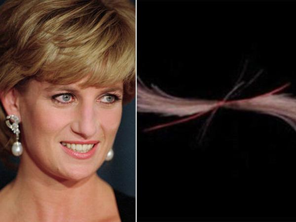 Rambut Mendiang Putri Diana Dilelang, Pihak Kerajaan Inggris Marah