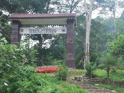 Wow, Taman Nasional Leuser Jadi Tempat Tak Tergantikan di Dunia