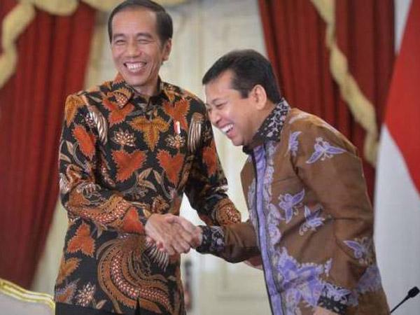 'Bingungnya' Presiden Jokowi yang Dimintai Perlindungan Hukum oleh Setya Novanto