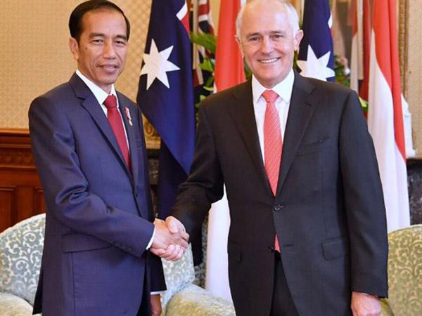Hangat dan Akrab, Ini Hasil Pertemuan Bilateral Jokowi dan PM Australia