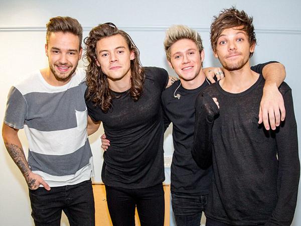 Inikah yang Akan Dilakukan Member One Direction Saat Hiatus Nanti?