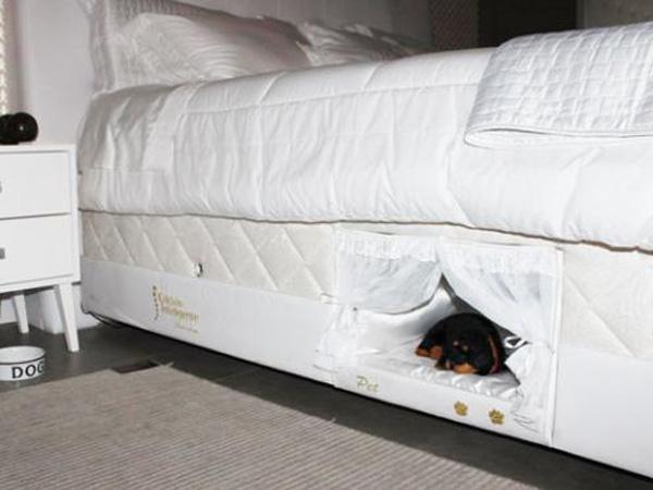 Tempat Tidur Ini Wujudkan Keinginan Untuk Dapat Tidur Dengan Hewan Peliharaan