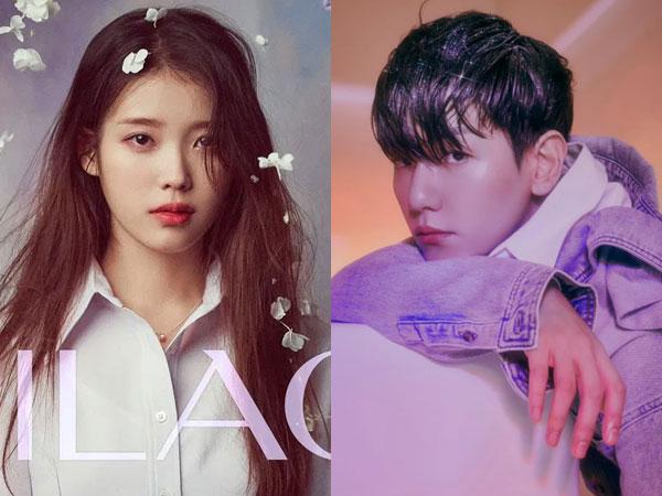 IU dan Baekhyun Debut di Chart Billboard World Albums Minggu Ini
