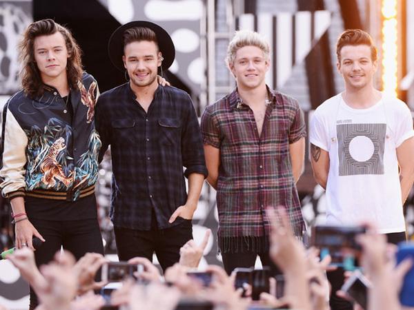 Kabar Hiatus Berujung Pada Rumor Bubar, Dua Member One Direction Buka Suara