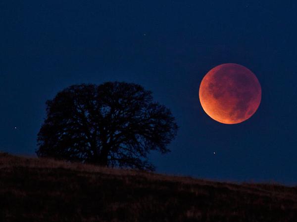 Saksikan Gerhana Bulan, Pria Ini Gemetar Kedinginan