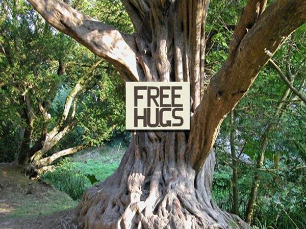 Bukan Dengan Sesama Manusia, Islandia Sarankan Warganya Memeluk Pohon Terkait Social Distancing