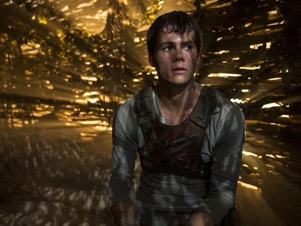 Syuting Ditunda Karena Terluka Parah, Ini Yang Sebenarnya Terjadi di Kecelakaan Aktor 'Maze Runner'