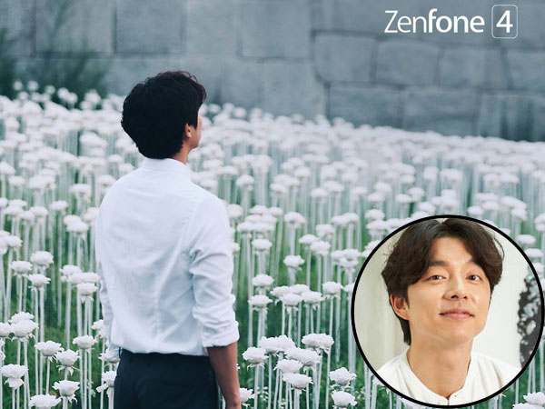 Asus Bayar Puluhan Miliar Gaet Gong Yoo Jadi Brand Ambassador Zenfone 4