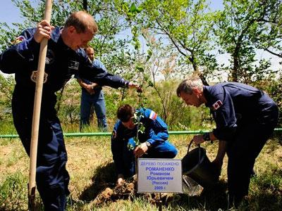 Semua Pohon Dijalan Ini Ditanam Oleh Astronot
