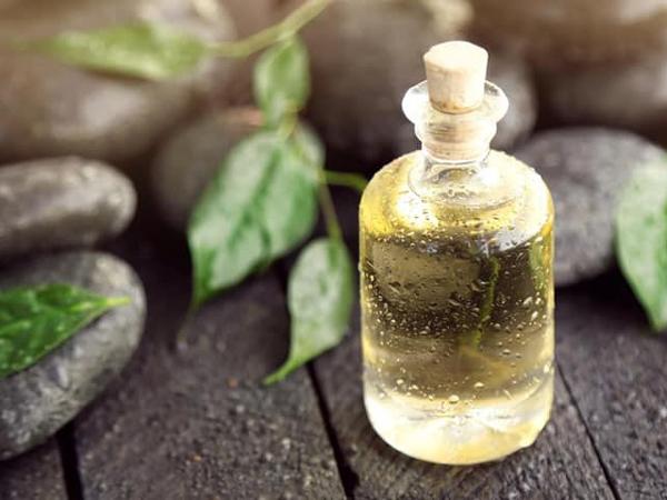 Tea Tree Oil Ternyata Tidak Mengandung Tanaman Teh Sama Sekali?