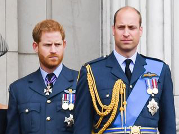 Pakar Kerajaan Inggris Ungkap Hubungan Pangeran William dan Pangeran Harry yang Renggang