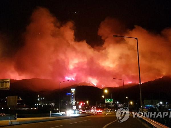 Kondisi Terkini Kebakaran Hebat Sokcho, Korea Selatan: 1 Orang Tewas, Ribuan Warga Diungsikan