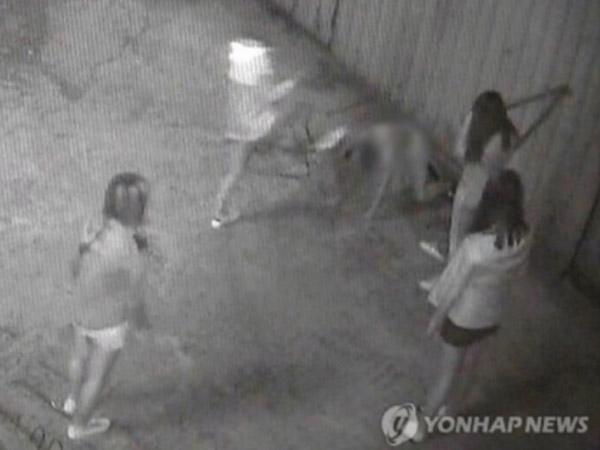 Viral Bullying Sadis yang Dilakukan Pelajar Muda Korea Selatan hingga Mandi Darah
