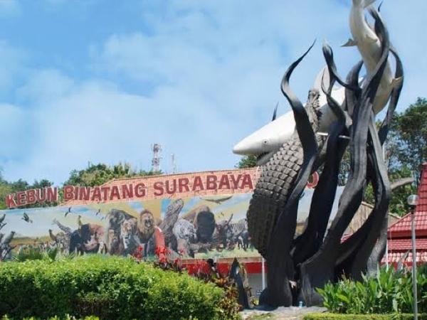 Surabaya Kalahkan Kota di Argentina Ini Jadi yang Terindah di Dunia!