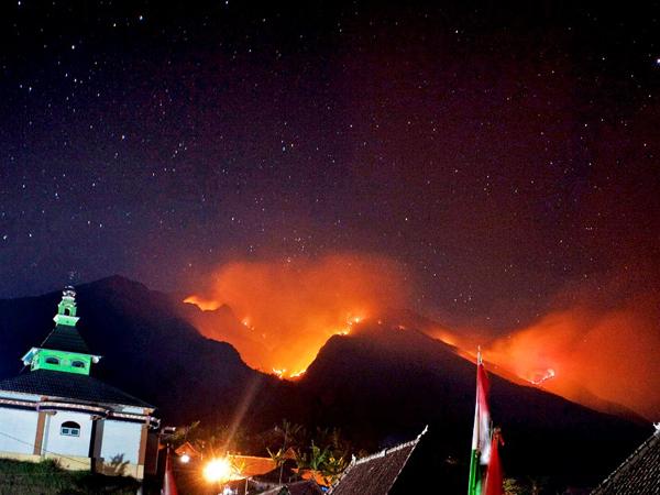 Api Semakin Dekat ke Pemukiman Warga, Kebakaran Hutan Gunung Lawu Belum Bisa Dipadamkan