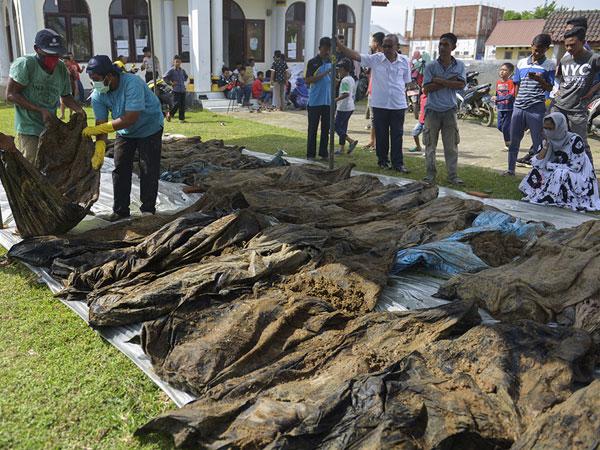 Geger Puluhan Jasad Korban Tsunami Aceh 14 Tahun Lalu Ditemukan Warga