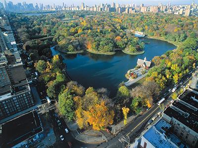 Taman Raksasa di Jantung Kota New York