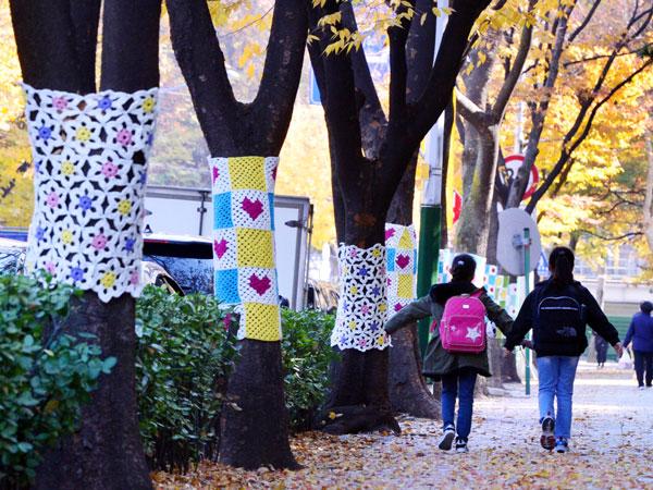 Sambut Musim Dingin, Ratusan Pohon di Incheon Korsel Diberikan Selimut