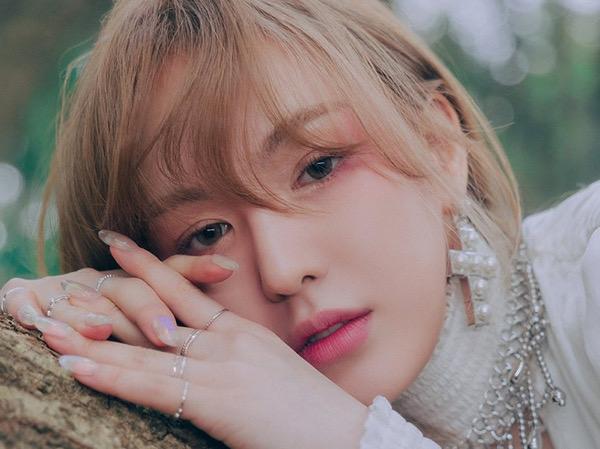 Wendy Red Velvet Buka-bukaan Soal Perasaannya Hiatus Panjang Akibat Cedera