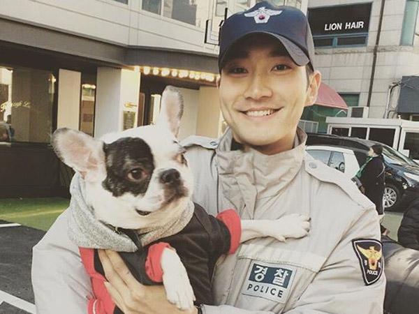 Siwon Juga Pernah Jadi Korban Anjing Peliharaannya Sampai Absen Tugas Wamil?