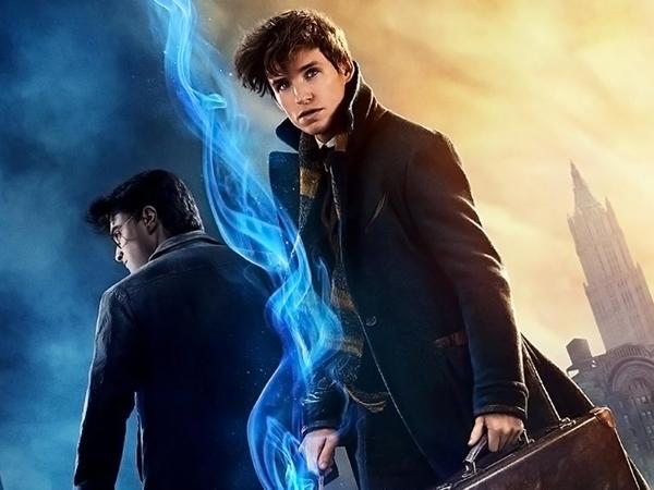 Box Office Tembus 2 Triliun, Newt 'Fantastic Beasts' Pernah Muncul di 'Harry Potter'?