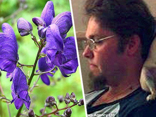 Duh, Pria Ini Tewas Setelah Sentuh Bunga Paling Beracun di Dunia!