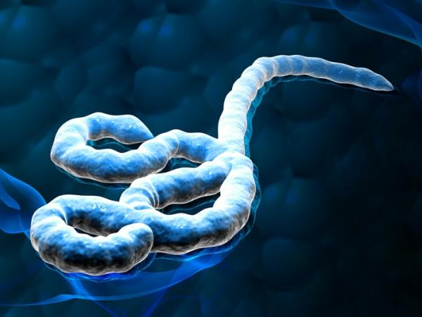 Tragedi Pesawat Hingga Virus Ebola, Simak Peristiwa di Dunia Selama Tahun 2014