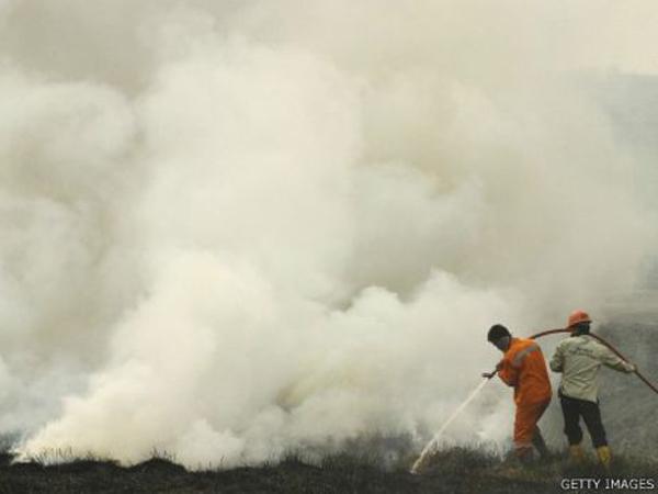 Kabut Asap Sampai Jakarta, Apa Tindakan Pemerintah?